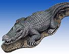 Alligator #1950