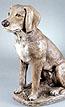 Labrador #2670